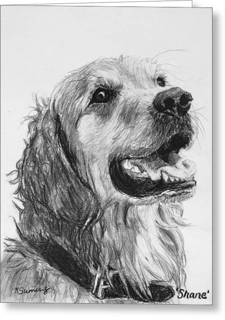 Wet Smiling Golden Retriever Shane Greeting Card