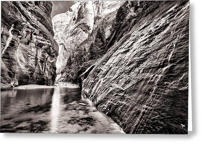 Wet Wall Bn Greeting Card by Juan Carlos Diaz Parra