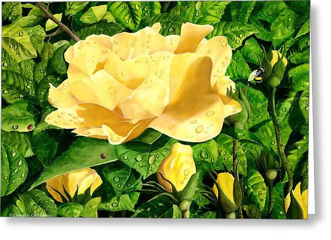 Wet Yellow Rose Greeting Card
