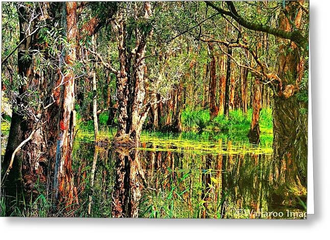 Greeting Card featuring the photograph Wetland Reflections by Wallaroo Images