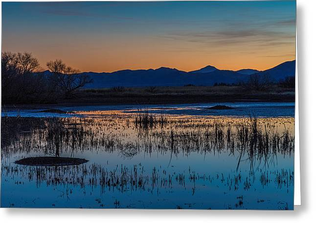Wetland Twilight Greeting Card by Beverly Parks