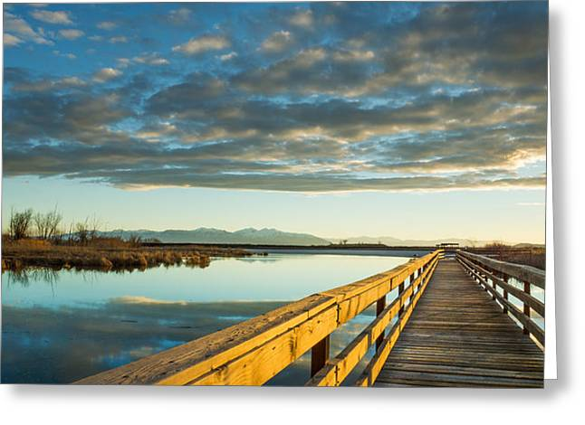 Wetland Wooden Path Greeting Card