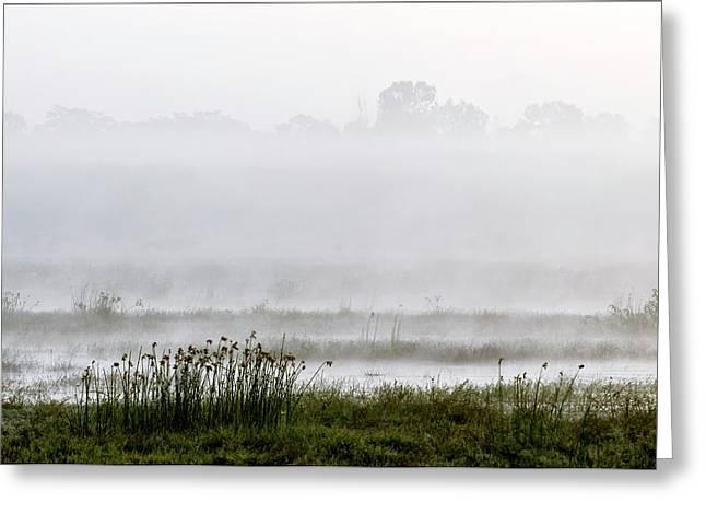 Wetlands In Mist Greeting Card by K Jayaram