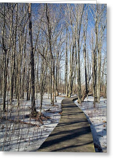 Wetlands In Winter Greeting Card by Jim West