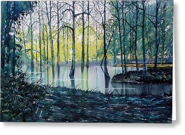 Wetlands On Skipwith Common Greeting Card