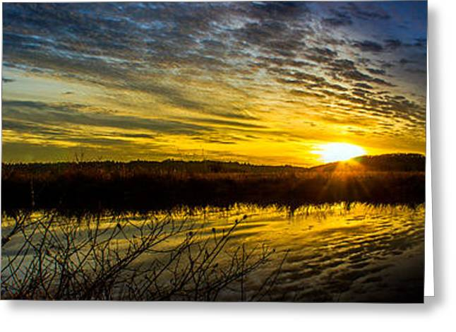 Wetlands Sunset Greeting Card by Michael Cross