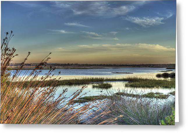 Wetlands Sunset Greeting Card by Richard Stephen