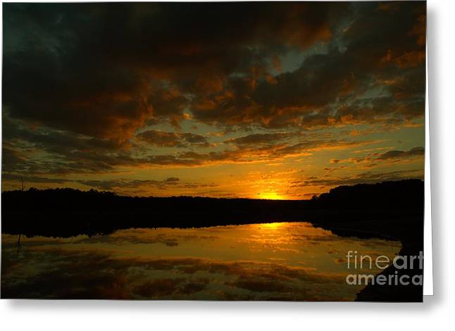 What A Sunset Greeting Card by Donna Brown