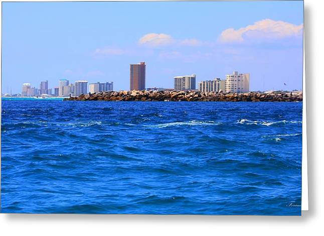 What A View Greeting Card by Debra Forand