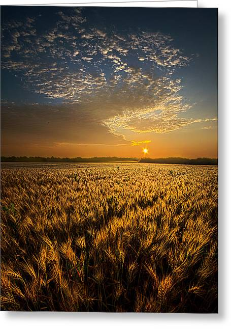 What Dreams May Come Greeting Card by Phil Koch