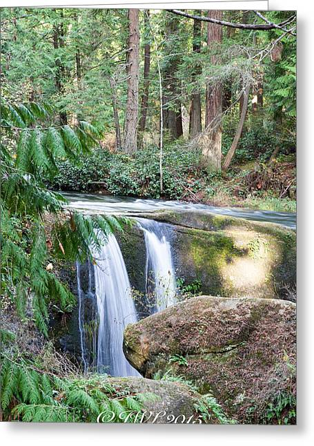 Whatcom Falls  Greeting Card