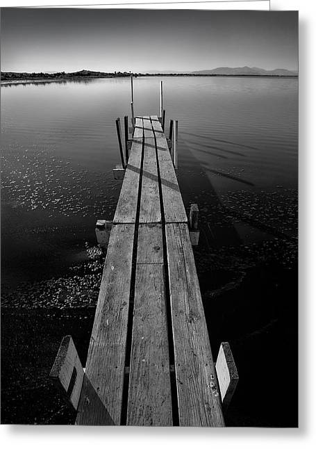 Whats Up Dock Greeting Card by Peter Tellone