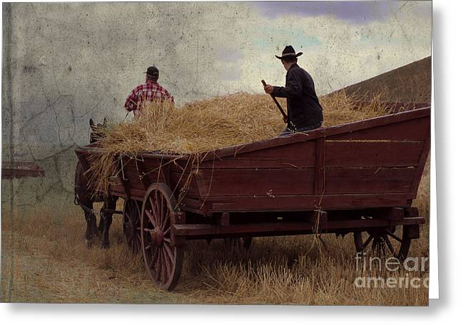 Wheat Wagon Greeting Card by Sharon Elliott