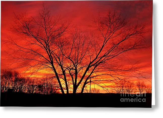 When Morning Guilds The Skies Greeting Card by Christian Mattison