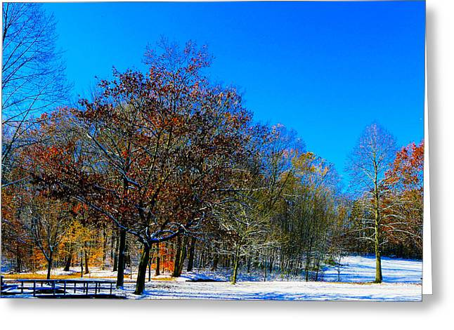 Where Autumn Falls Into Winter Greeting Card