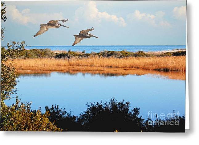 Where The Marsh Meets The Atlantic Greeting Card by Kathy Baccari