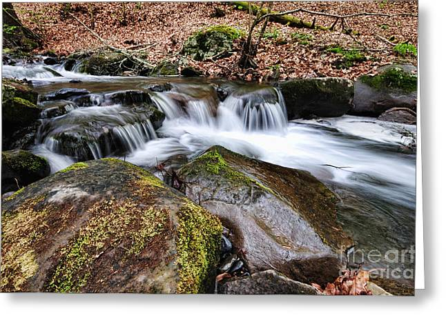 Where The River Flows Greeting Card by Paul Ward