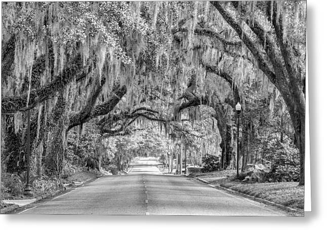 Where The Road Leads Greeting Card by Carl Clay