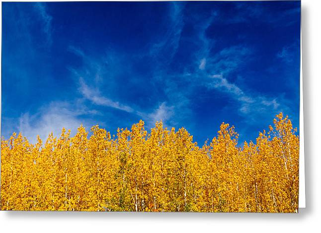 Where There Is Smoke There Is Fall Color Greeting Card