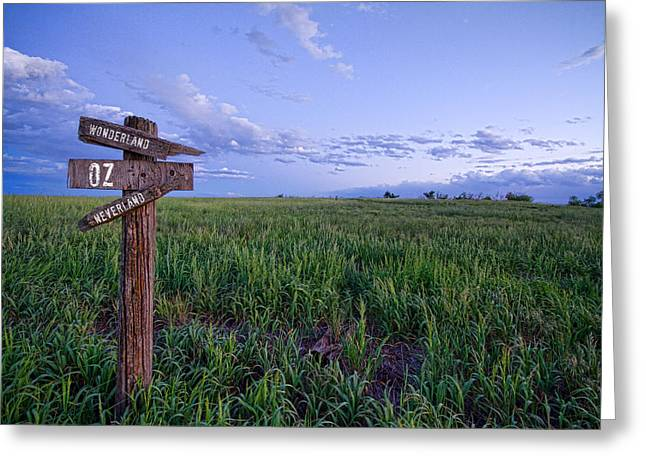 Which Way To Go Greeting Card by James BO  Insogna