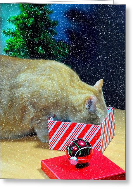 Whiskey's Present Greeting Card by Diana Angstadt