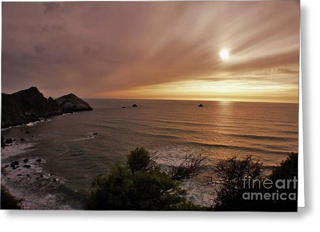 Whisped Away  Greeting Card by John Bailey
