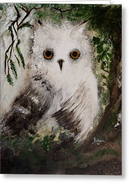 Whisper The Snowy Owl Greeting Card by Barbie Batson
