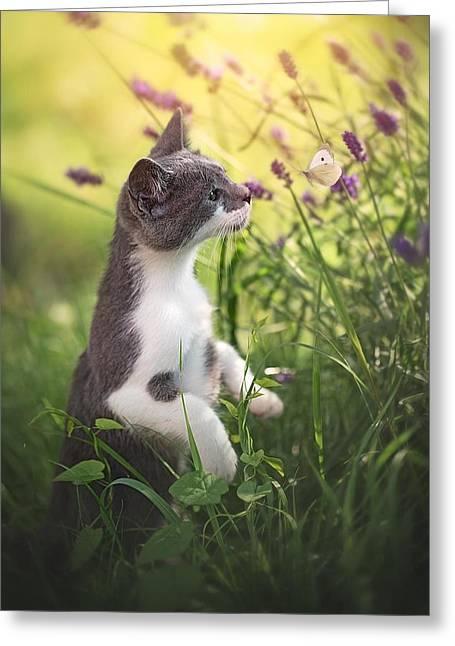 Whispering.. Greeting Card