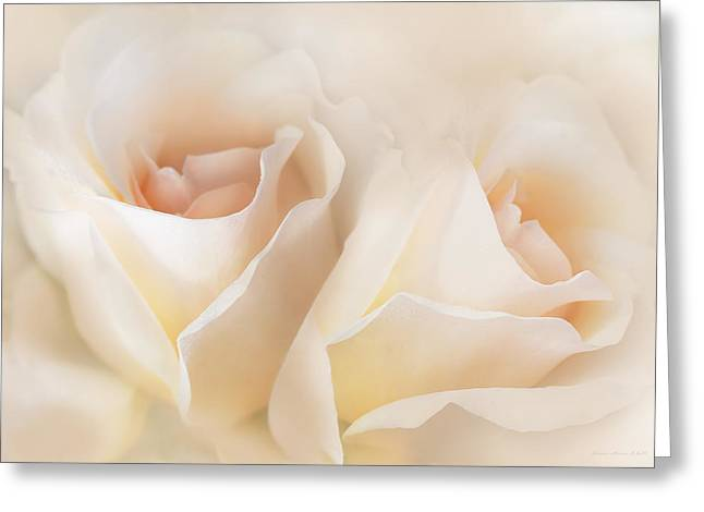 Whispers Of Peaches And Cream Roses Greeting Card by Jennie Marie Schell