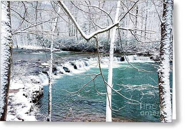 Whitaker Falls In Winter Greeting Card