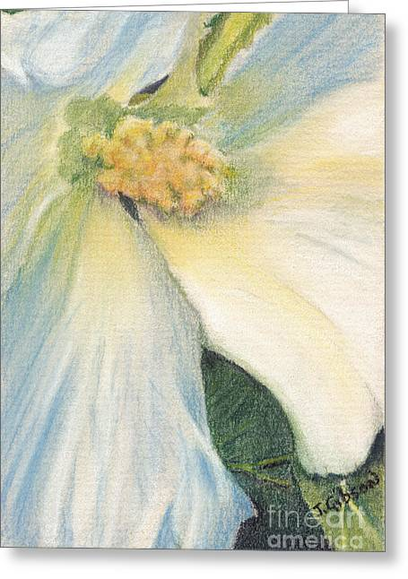 White Althea Greeting Card by Jan Gibson