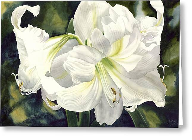 White Amarylilis Greeting Card by Alfred Ng