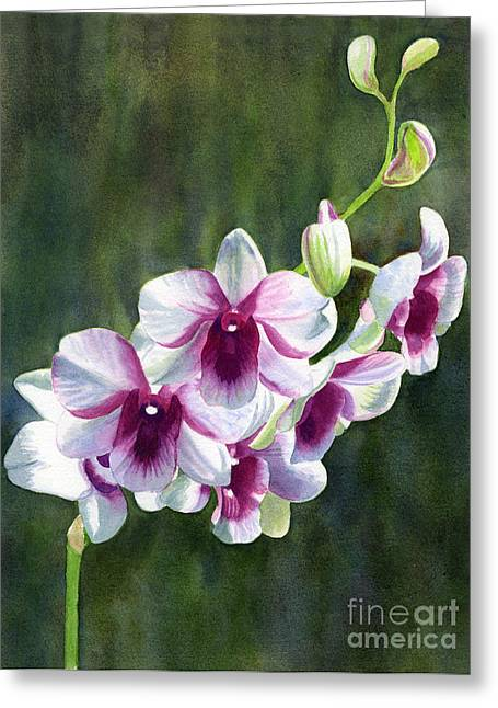White And Red Violet Orchid Greeting Card by Sharon Freeman