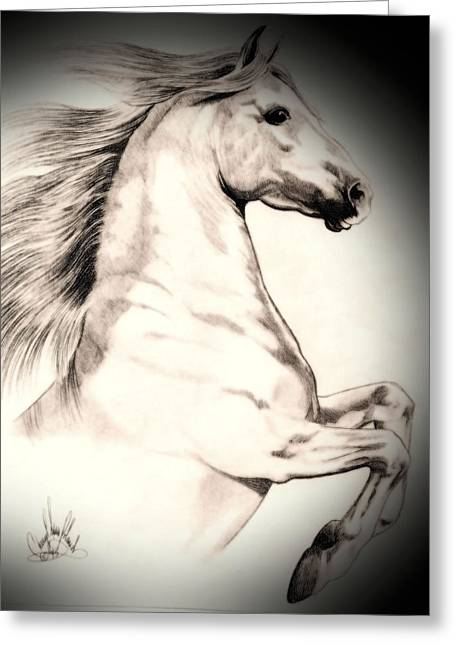 White Andalusian In Vinette Greeting Card