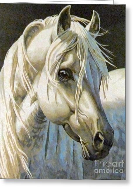 white Arabian Greeting Card by Audrey Van Tassell