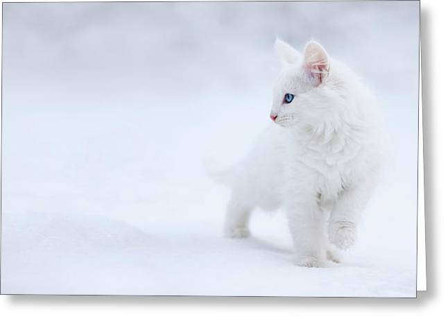 White As Snow Greeting Card