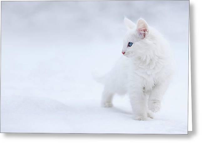 White As Snow Greeting Card by Esm?e Prexus