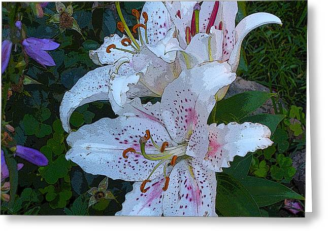 White Asian Lilies Greeting Card