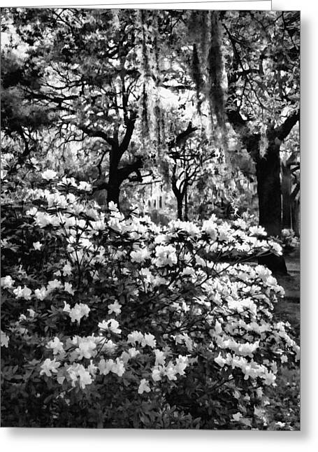 White Azaleas Paint Greeting Card by Diana Powell