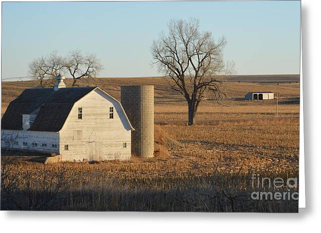 White Barn With Silo Greeting Card