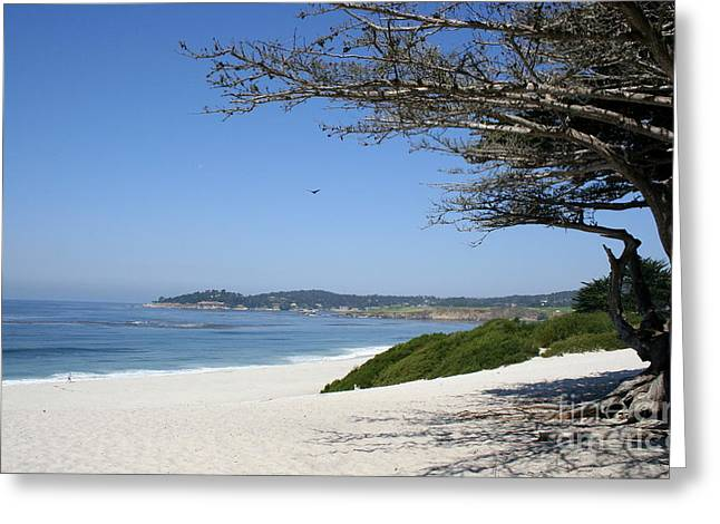 White Beach At Carmel Greeting Card by Christiane Schulze Art And Photography