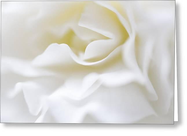 White Begonia Petals Greeting Card