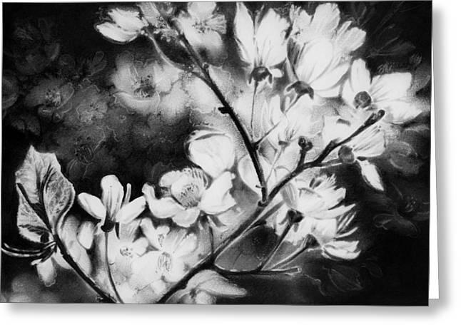 White Blossom Greeting Card by Natasha Denger