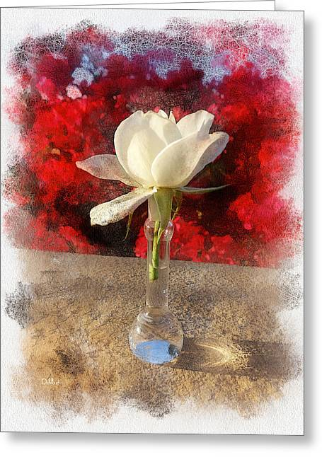 White Bud And Vase Greeting Card by Rick Lloyd
