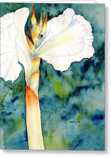White Canna Flower Greeting Card by Carlin Blahnik