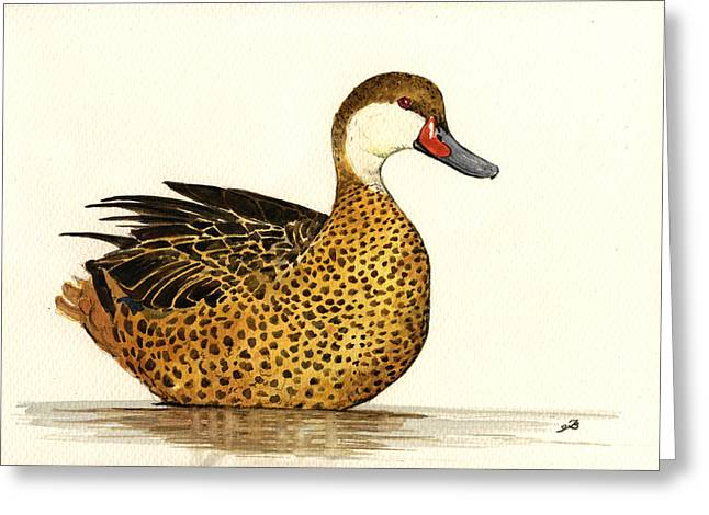 White Cheeked Pintail Greeting Card by Juan  Bosco