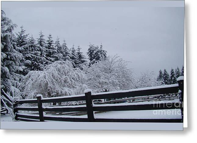 White Christmas Greeting Card by Beverly Guilliams