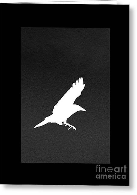 White Crow Greeting Card by Linsey Williams