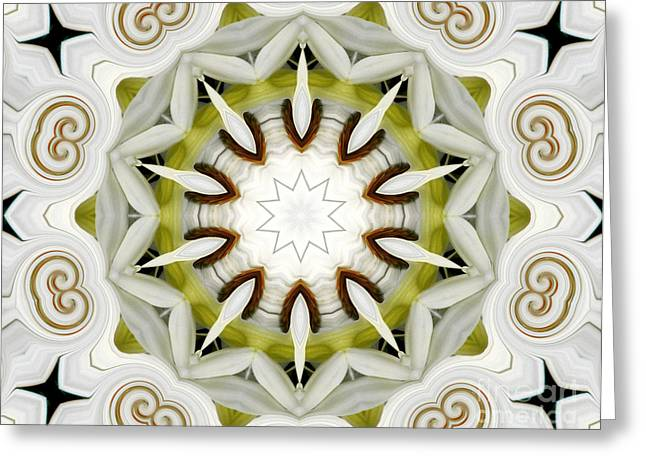 Greeting Card featuring the photograph White Daisies Kaleidoscope by Rose Santuci-Sofranko