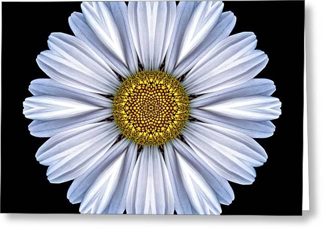 White Daisy Flower Mandala Greeting Card by David J Bookbinder